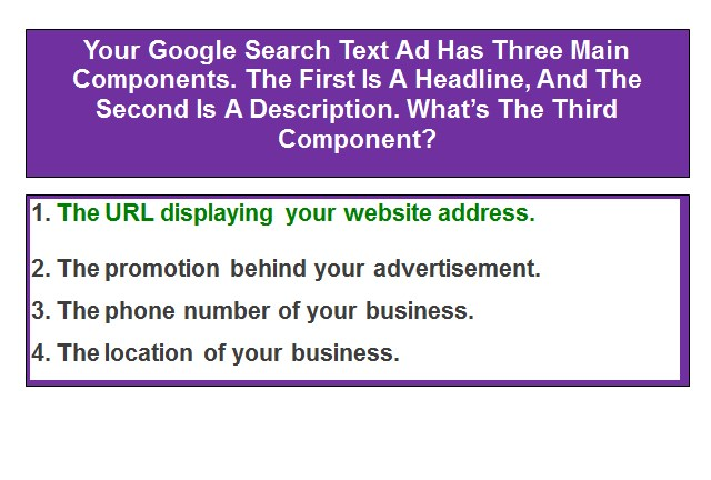 Your Google Search Text Ad Has Three Main Components. The First Is A Headline, And The Second Is A Description. What's The Third Component?