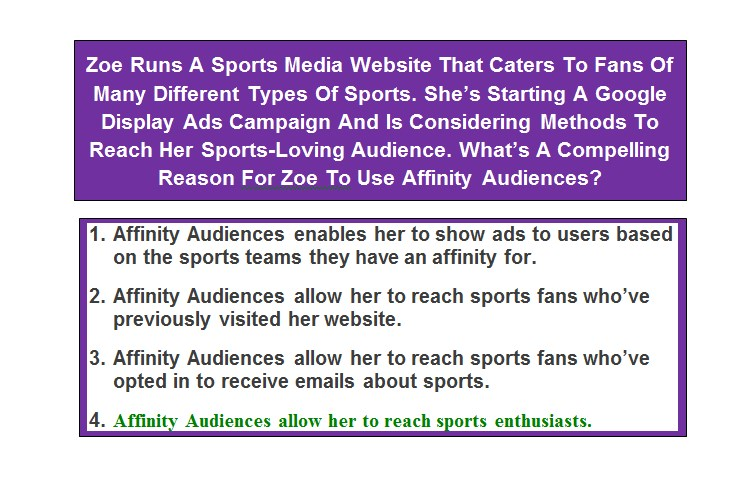 Zoe Runs A Sports Media Website That Caters To Fans Of Many Different Types Of Sports. She's Starting A Google Display Ads Campaign And Is Considering Methods To Reach Her Sports-Loving Audience